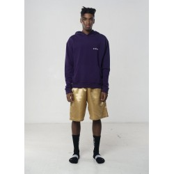 AVNIER - Vertical back purple hoodie